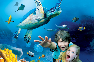 SEA LIFE Grapevine Aquarium - Up to $7 off